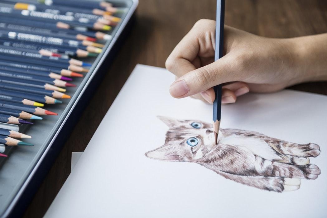 Dit is een post over hobby en vrije tijd!